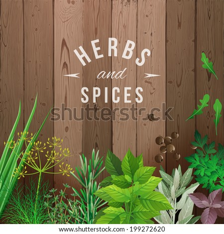 Highly detailed herbs and spices over wooden background - stock vector
