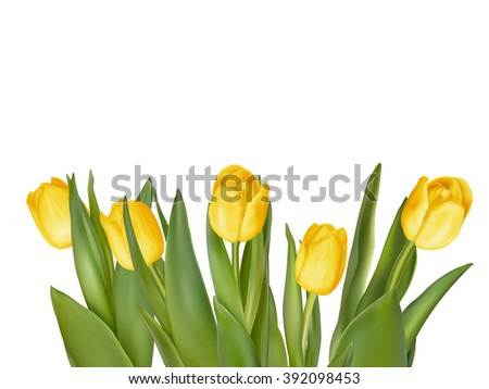 Holiday background with bouquet of yellow tulips. EPS 10 vector file included