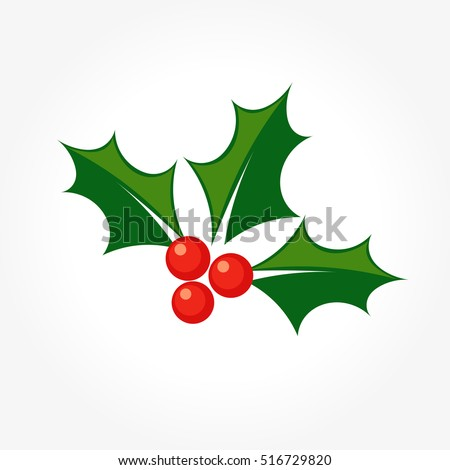 Holly berry Christmas plant icon. Vector illustration