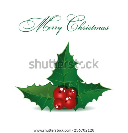 Holly berry Christmas symbol. Vector - stock vector