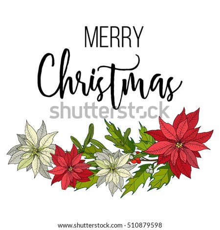 Holly, poinsettia and mistletoe. Christmas and New Year greeting card, vector illustration