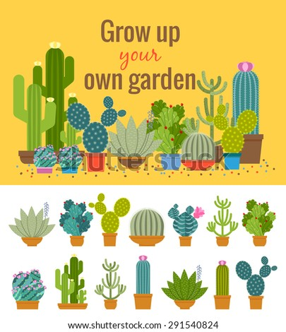 Home cactus garden poster. Green plant, flower and nature, pot and set of houseplant, vector illustration - stock vector