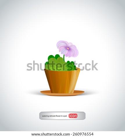 home flower in pot - stock vector