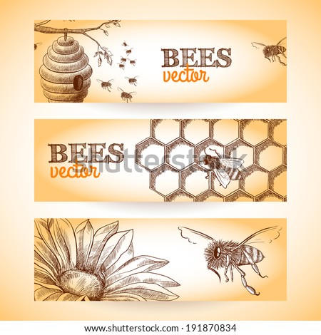 Honey bee hive comb and flower sketch banners set isolated vector illustration.  - stock vector
