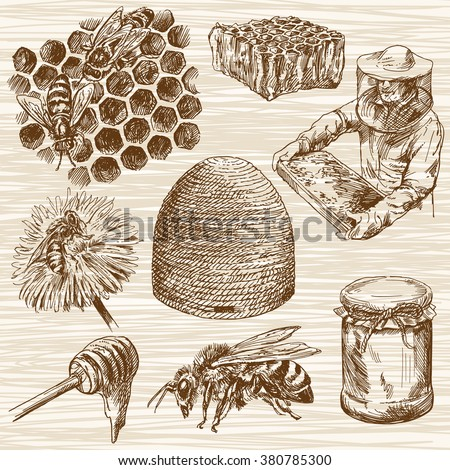 Honey. Beehive and honey. Honeycomb. Bottle with honey. Beekeeper with honey.. Hand drawn set. - stock vector