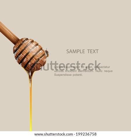 Honey dipper with bee. Vector EPS10 - stock vector