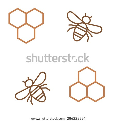 Honeycomb and bee - stock vector