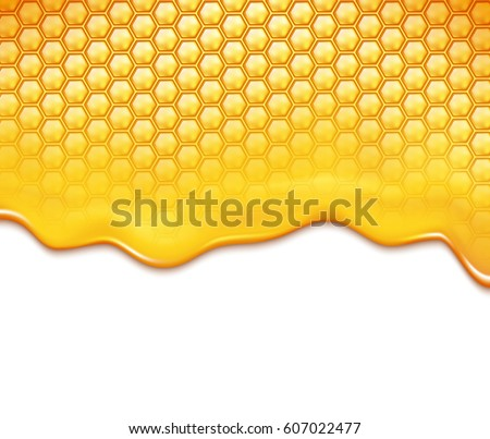 honeycomb and sweet honey drips
