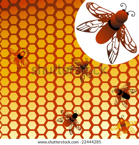 honeycomb with bees with enlargement to show detail