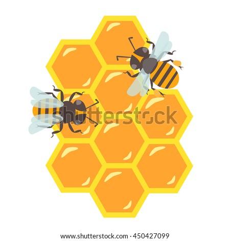 Honey Bee Hive Vector