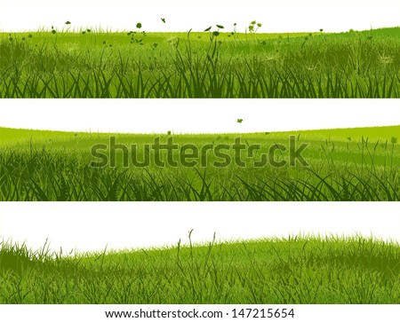 Horizontal banners of abstract meadow grass in green tone. - stock vector