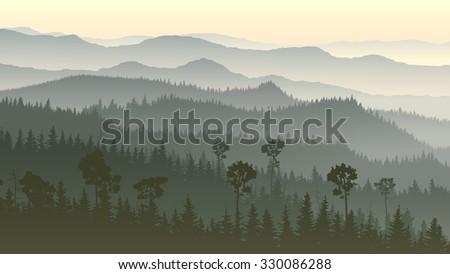 Horizontal illustration of morning misty coniferous forest hills. - stock vector