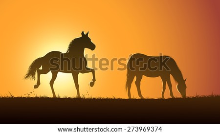 Horizontal vector illustration pair of wild horses in meadow at sunset. - stock vector