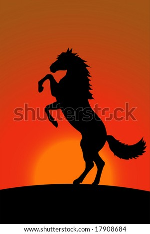 Horse bucks on the background of the sunset - stock vector
