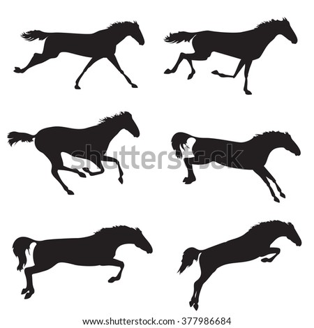Horse different shape. Silhouettes of horses. Black horses on isolated background. Set of wild horses. Vector horse collection - stock vector