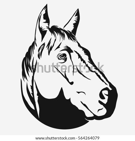 horse head profile design on white stock vector 564264079