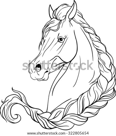 Horse pigtailed