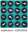 Horse riders silhouettes. Horse icons. - stock vector