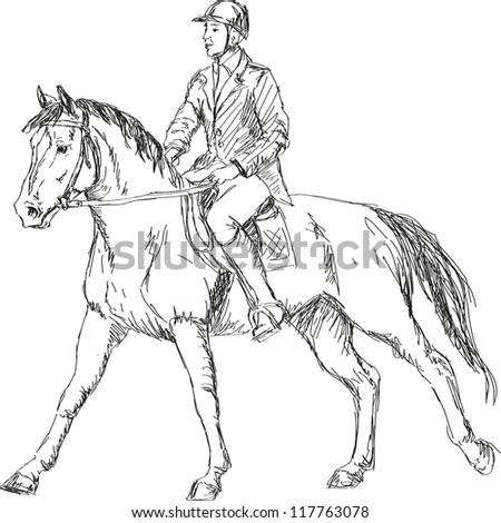 horse riding - stock vector