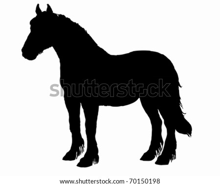 Draft Horse Stock Images, Royalty-Free Images & Vectors | Shutterstock