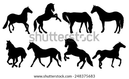horse silhouettes on the white background
