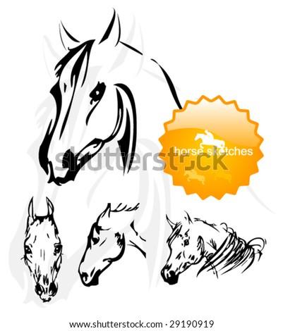 horse sketches - stock vector
