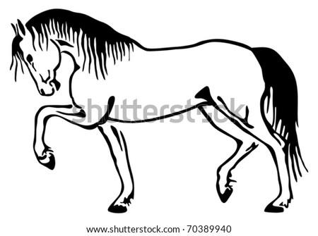 Horse steps. Vector sketch - stock vector