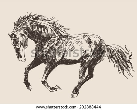 horse vintage engraved illustration, retro style, hand drawn - stock vector