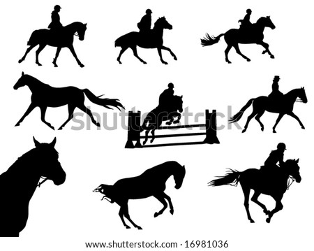 horses and riders silhouettes - stock vector