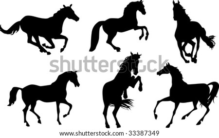 Horses silhouettes set