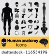 Human anatomy black & white icon set. Vector illustration. - stock photo