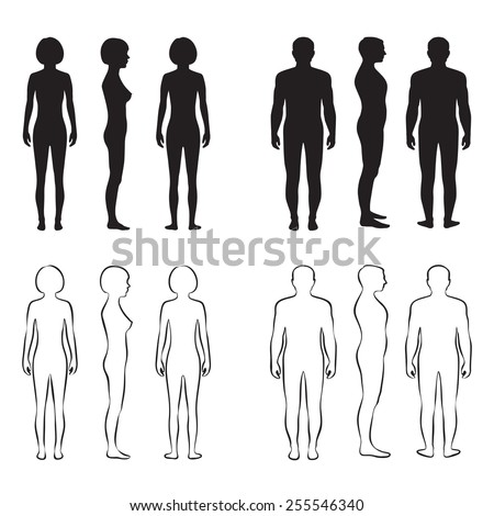 human body anatomy,front vector man, woman silhouette - stock vector