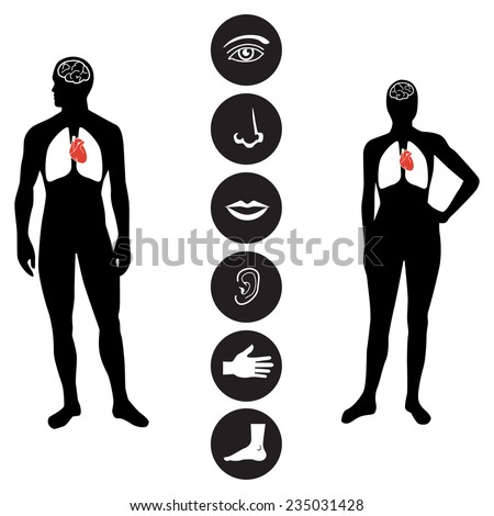 Human body part icon - stock vector