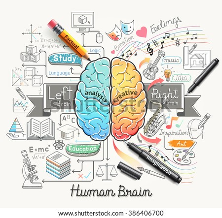 Human brain diagram doodles icons style. Vector illustration. - stock vector