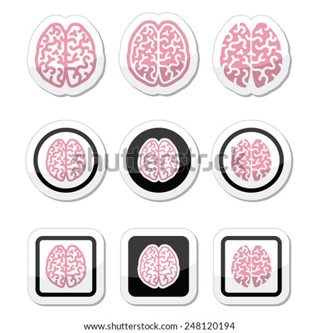 Human brain icons set - intelligence, creativity concept - stock vector