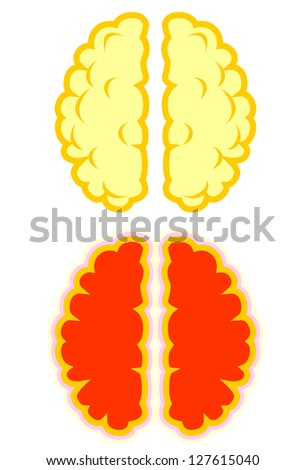 Human Brain in vector format - stock vector
