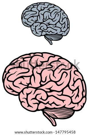 Human brain isolated on white background for medicine design or idea of logo. Jpeg version also available in gallery - stock vector