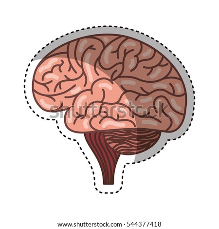 human brain organ isolated icon vector stock vector 544377334, Muscles