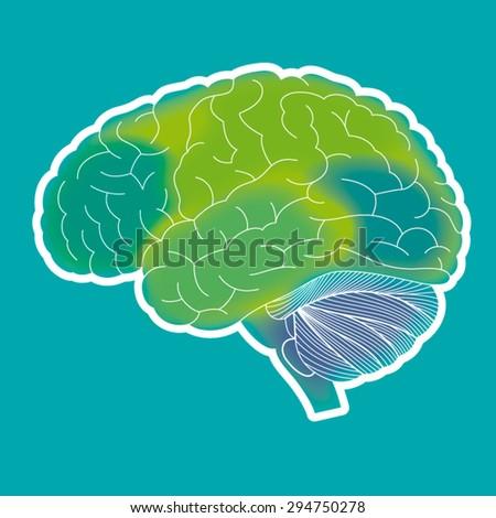 Human brain vector illustration - stock vector
