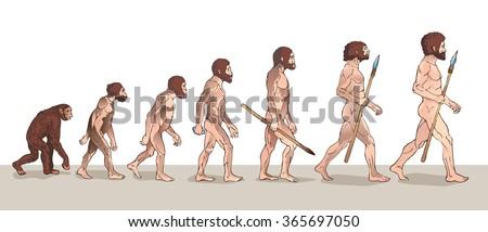 Human Evolution. Man Evolution. Historical Illustrations. Human Evolution Vector Illustration. Progress Growth Development. Monkey. Neanderthal. Homo Sapiens. Primate With Weapon. History. - stock vector