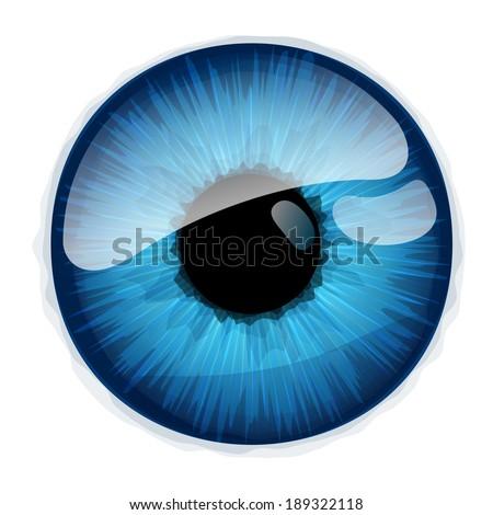 Human eye iris isolated on white background. - stock vector