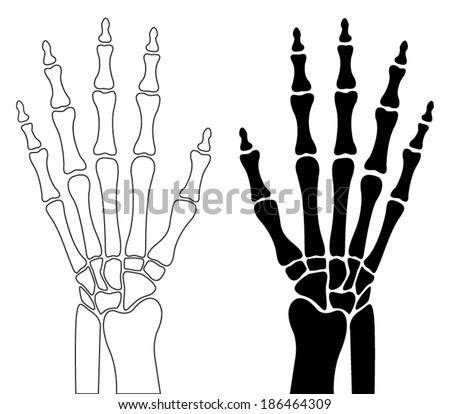 Human Hand Bones Stock Vector 186464309 Shutterstock