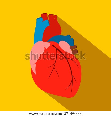 Human heart flat icon for web and mobile devices - stock vector