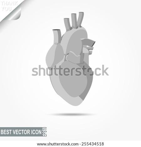 Human heart icon, flat design - vector illustration - stock vector