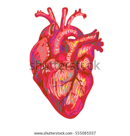 Heart free vector download 4079 Free vector for