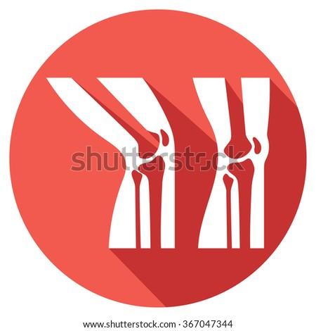human knee joint anatomy flat icon  - stock vector