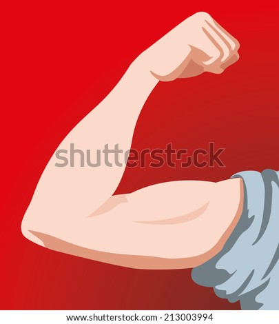 Human Male Anatomy arm  - stock vector