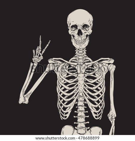 Human Skeleton Posing Isolated Over Black Stock Vector Hd Royalty