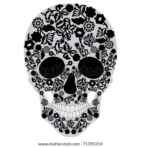 Human skull, isolated on white - stock vector