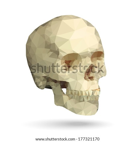 human skull 3/4 view made with triangles vector design